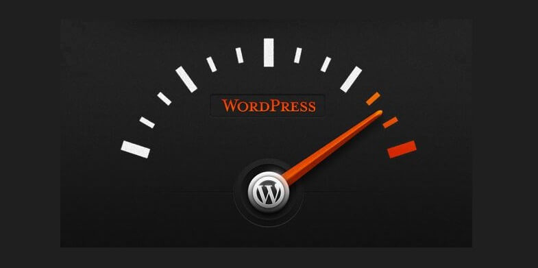 WP Site Speed Optimization